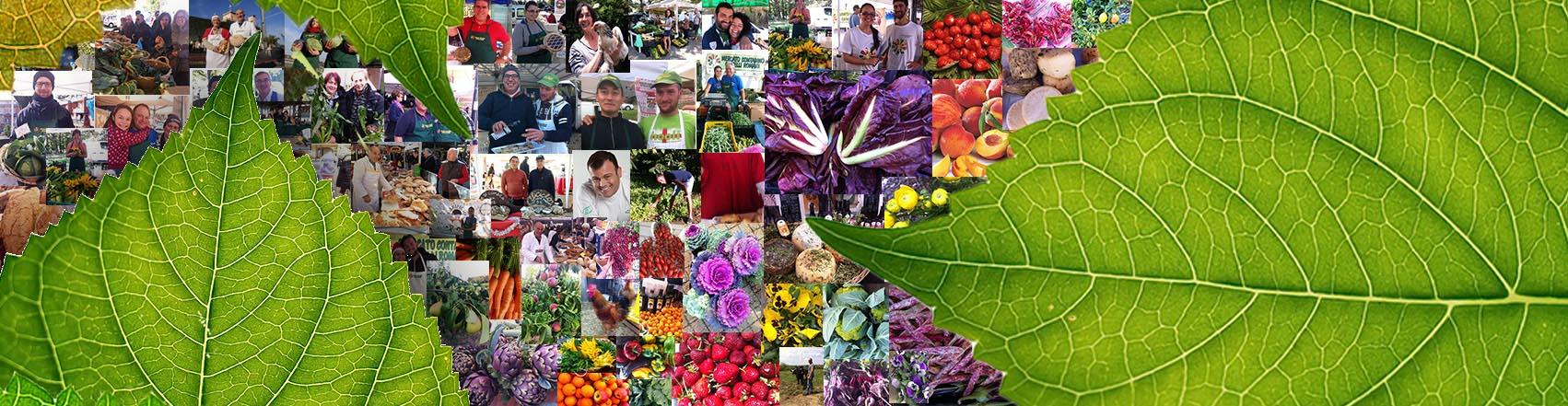 mercato_contadino_comunita_del_cibo_km0_spesa_di_qualita
