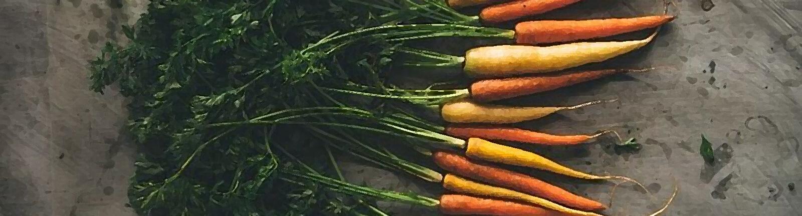 mercato contadino carote