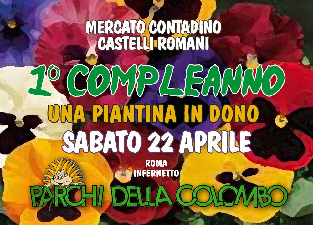 mercato_infernetto_piantina_in_dono