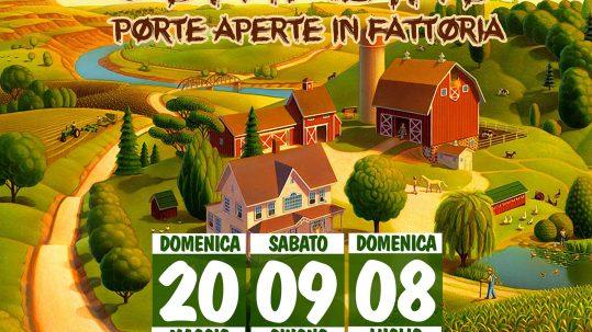 FATTORIA_SAN_NICOLA_2018_mercato_contadino