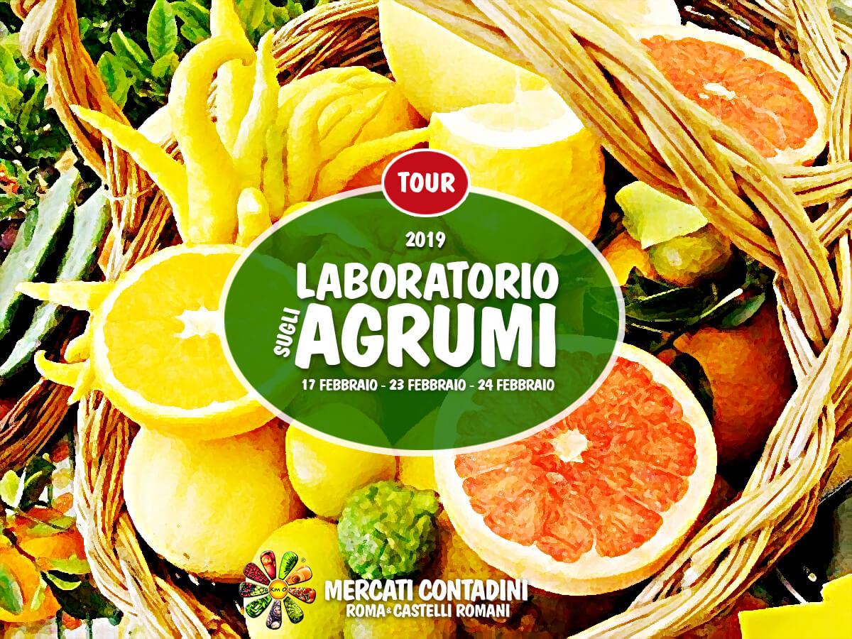 laboratorio_agrumi_frutta_mercato_contadino