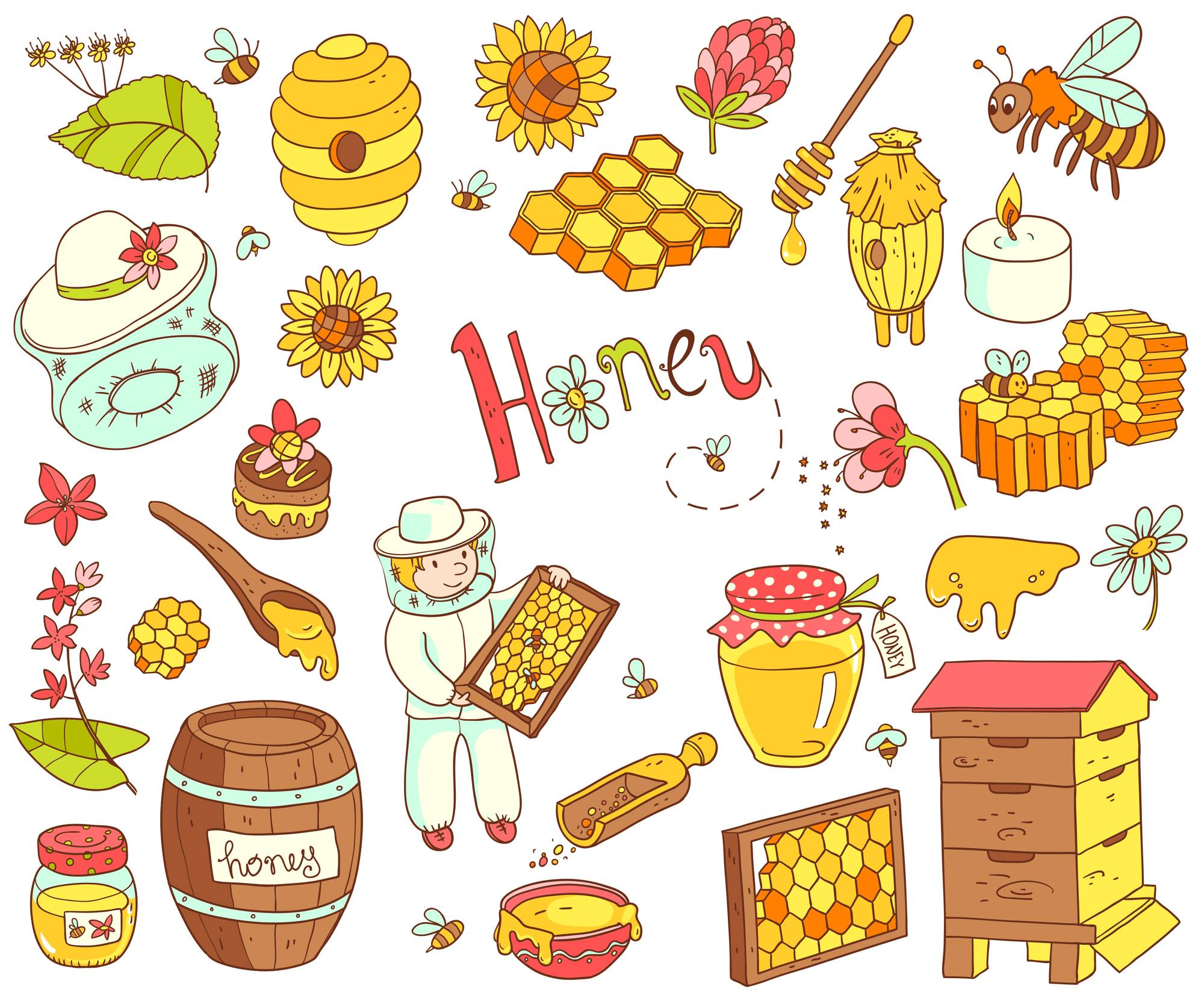ariccia miele mercato contadino